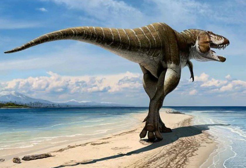 Bukan T-Rex, Ini Dinosaurus Terbuas yang Hidup di Bumi