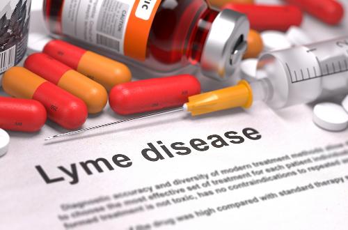 7 Fakta Penyakit Lyme yang Wajib Diketahui