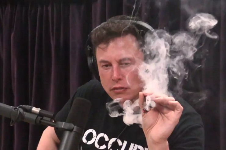 Gara-gara Isap Ganja, Elon Musk Ditawari Main Film Porno