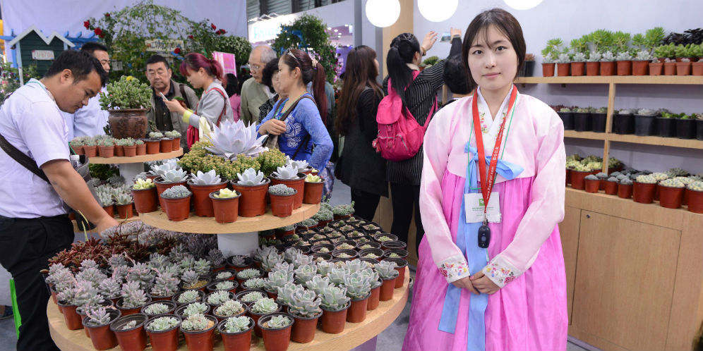 Melihat Langsung Pameran Bunga Terbesar di Tiongkok